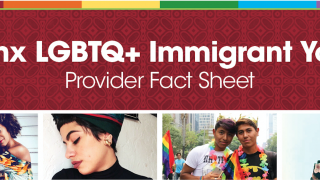 Latinx LGBTQ Immigrant Youth Provider Fact Sheet image